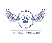 Angels Helping Animals Worldwide (West Tisbury, Massachusetts) logo with wings and paw print