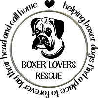 Boxer Lovers Rescue (Boise, Idaho) logo with boxer dog & tagline 'helping boxer dogs find a place to forever lay their head ...'