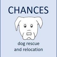 Chances Dog Rescue and Relocation (Spring, Texas) logo