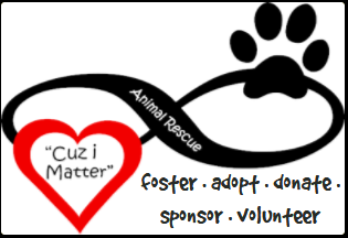 Cuz I Matter Animal Rescue (Pflugerille, Texas) logo of heart with paw and text