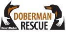 Desert Harbor Doberman Rescue of Arizona (Phoenix) logo with hands on dobermans