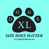 """Dogs XL Rescue (Baltimore, Maryland) logo blue background, black paw print with """"DOGS X"""" in it & """"size does matter"""""""