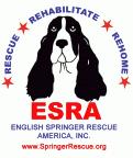 English Springer Rescue America (Northridge, California) logo with spaniel and 'rescue, rehabilitate, remove' tagline