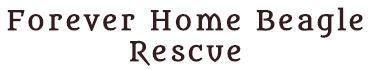 Forever Home Beagle Rescue (Pittsburgh, Pennsylvania) logo