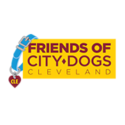 Friends of City Dogs Cleveland (Lakewood, Ohio) logo dog collar with CLE on dog tag