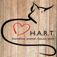 Homeless Animal Rescue Team (Cambria, California) logo has the outline of a cat with a red heart next to the org name