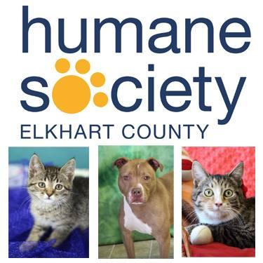 Humane Society of Elkhart County (Bristol, Indiana) logo dog and cat photos