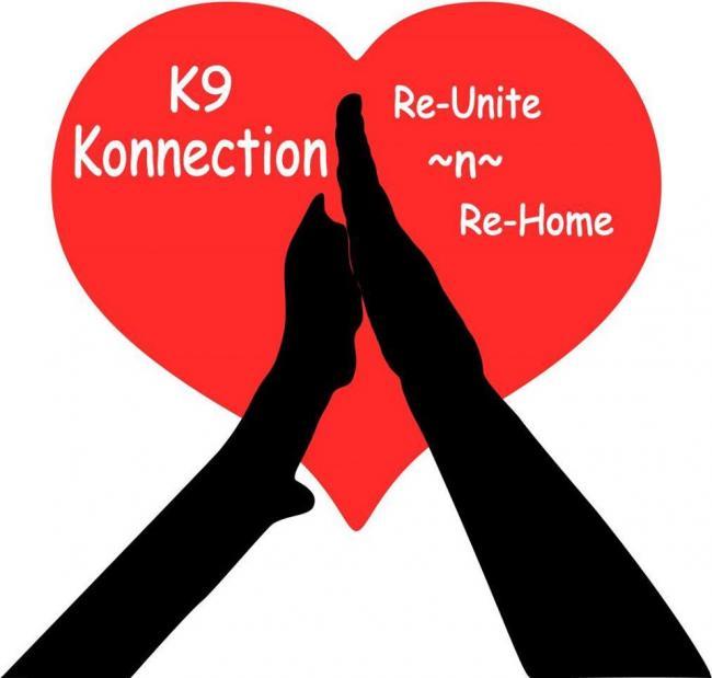 K9 Konnection (Wickenburg, Arizona) logo dog paw and human hand touching in heart