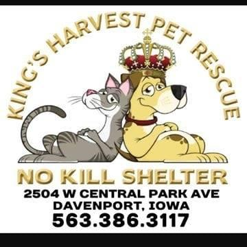 Kings Harvest Pet Rescue (Davenport, Iowa) logo dog in crown and cat
