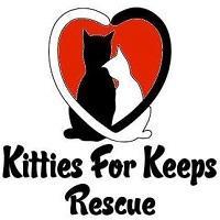 Kitties For Keeps Rescue, Inc. (Lansing, Illinois) logo