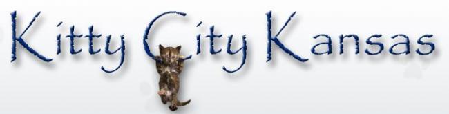 Kitty City Kansas Rescue (Lenexa, Kansas) logo of Kitty City Kansas Rescue text and cat