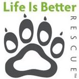 Life is Better Rescue (Lakewood, Colorado) logo of paw with Life Is Better text