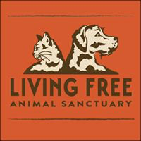 Living Free (Mountain Center, California) logo of cat and dog heads with text Living Free Animal Sanctuary