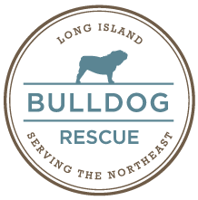"""Long Island Bulldog Rescue (Stony Brook, New York) logo is the org name in a circle with a bulldog standing over """"Bulldog"""""""