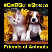 Loudon County Friends of Animals (Loudon, Tennessee) logo is a picture of a puppy and kitten with yellow flowers