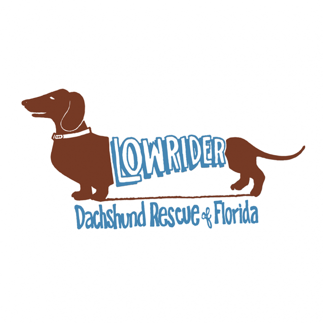 Low Rider Dachshund Rescue of Florida, Inc. (Port Charlotte, Florida) logo dachshund with lowrider text on it