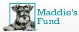 Maddie's Fund (Pleasanton, California) logo of Mini Schnauzer, 25 years, #ThanksToMaddie, Maddie's Fund