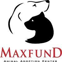 MaxFund Animal Adoption Center (Denver, Colorado) logo of white dog and black cat silhouette hugging, Maxfund