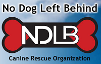 """No Dog Left Behind (Brooklyn Center, Minnesota) logo is """"NDLB"""" on a red and black bone in the middle of the organization name"""
