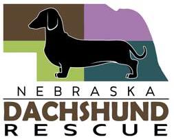 Nebraska Dachshund Rescue (Omaha, Nebraska) logo is a black dachshund on the state of Nebraska divided into four color quadrants