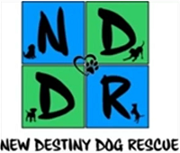 New Destiny Dog Rescue (Wartrace, Tennessee) logo of four blue and green squares, dog silhouettes, NDDR New Destiny Dog Rescue