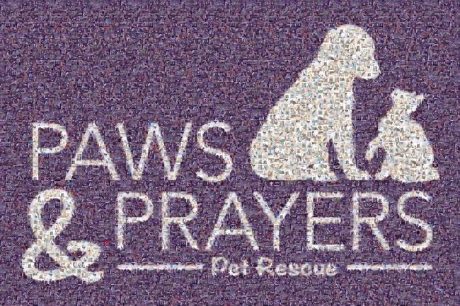 Paws and Prayers, Inc. (Cuyahoga Falls, Ohio) logo dog and cat in square