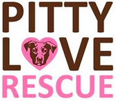 """Pitty Love Rescue (Rochester, New York) logo is the organization name with a heart with a pit bull face on it for the """"o"""""""