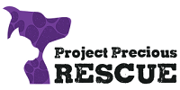 Project Precious Rescue (Stamford, Connecticut) logo is the profile of a white cat in front of a purple dog next to the org name