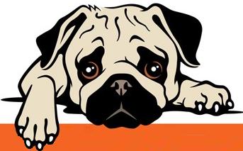 Ruff Patch Rescue NKUT (West Jordan, Utah) | logo of pug, puggle, cartoon, yellow text Ruff Patch Rescue