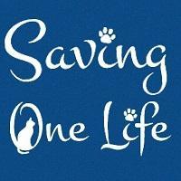 Saving One Life (Chandler, Arizona) | logo of SOL, Saving One Life, black cat, paw prints