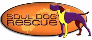 Soul Dog Rescue (Fort Lupton, Colorado) | logo or orange oval, purple dog, yellow leg, soul dog rescue