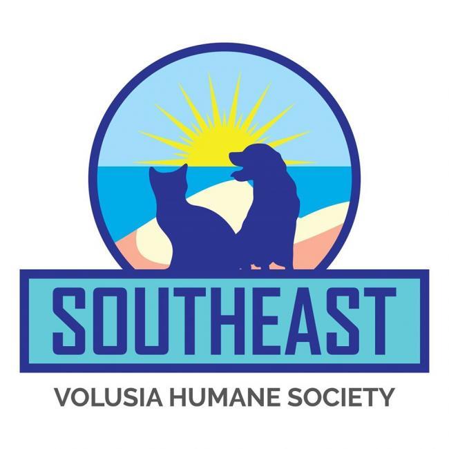 Southeast Volusia Humane Society (New Smyrna Beach, Florida) logo dog cat sunshine on beach
