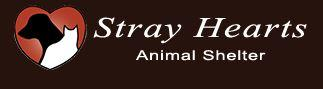 Stray Hearts Animal Shelter (Taos, New Mexico) logo is a white cat and black dog inside a heart next to the organization name