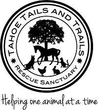Tahoe Tails and Trails Rescue Sanctuary (Stateline, Nevada) | logo of black tree, horse, dog, cat, duck, rabbit, circle
