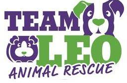 Team Leo Animal Rescue, (Vail, Colorado) Logo dog and critter face in purple and green with purple and green text