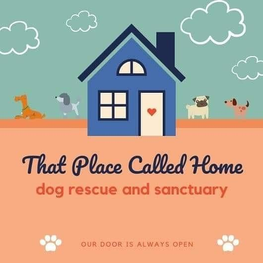 That Place Called Home (Yreka, California) logo dogs house clouds