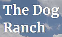 The Dog Ranch Inc., The Canty Dog Ranch (Washoe Valley, Nevada) logo white lettering with blue sky cloud background