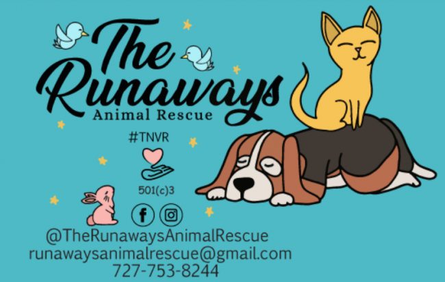 Runaways Animal Rescue Inc., (Port Richey, Florida) logo tan cat sitting on brown dog with pink rabbit and turquoise background
