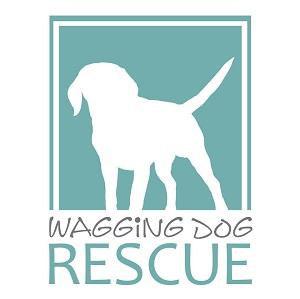 Wagging Dog Rescue NKLA (Carlsbad, California)   logo of white dog, green square, text waggin dog rescue