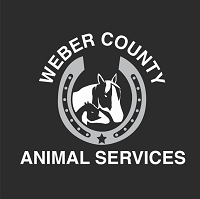Weber County Animal Services NKUT (Ogden, Utah)   logo of horse, foal, horseshoe, silhouette, text Weber County Animal Services