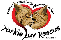 Yorkie Luv Inc. (Goodyear, Arizona) logo is two Yorkie heads in a heart surrounded by the tagline and org name