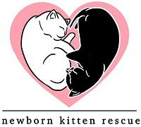 Newborn Kitten Rescue (Scottsdale, Arizona) logo